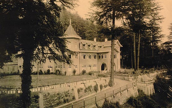 my-chance-discovery-of-woodville-palace-5
